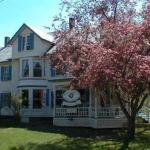 Rose Arbour Bed & Breakfast - Adults Only