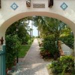 Sandpiper Inn - Florida - Bed And Breakfast - Adult Only