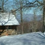 Fire Mountain Inn, Cabins & Treehouses - Bed And Breakfast