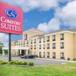 Accommodation near Tioga Downs - Comfort Suites Vestal