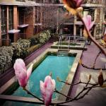 Accommodation near Concord Pacific Place Vancouver - L'Hermitage Hotel