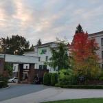 Holiday Inn Express Hotel & Suites Surrey