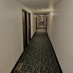 Minnesota Renaissance Festival Accommodation - Super 8 Shakopee