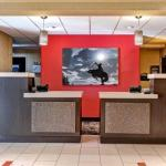 Accommodation near Primitive Fear, Inc. - Best Western Plus Denver International Airport Inn & Suites