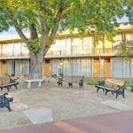 Hotels near Robert Z. Hawkins Amphitheater - Super 8 - Meadow Wood Courtyard
