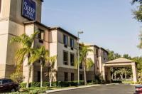 Sleep Inn & Suites Lakeland