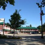 Accommodation near Red Deer Arena - Beach Front Resort