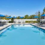 Hotels near Florida Agricultural and Mechanical University - Four Points By Sheraton Tallahassee Downtown