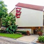 MIDFLORIDA Credit Union Amphitheatre Accommodation - Red Roof Inn Tampa Fairgrounds