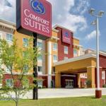 Hotels near The Shaw Center for The Arts - Brunner Gallery - Comfort Suites Denham Springs