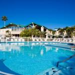 Accommodation near Ruth Eckerd Hall - Best Western PLUS Yacht Harbour Inn
