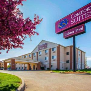 Genevieve Green Gardens Hotels - Comfort Suites Normal
