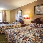 Econo Lodge Kannapolis