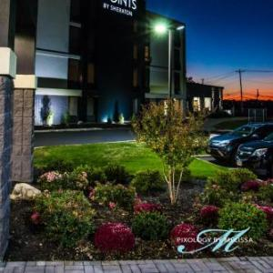 Hotels near Allentown Fairgrounds - Comfort Suites Allentown