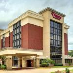 Accommodation near Lone Star Convention Center - Drury Inn & Suites The Woodlands