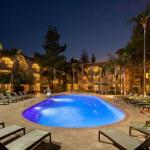 Hotels near Stray Cat - Embassy Suites Phoenix - Tempe