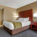 Accommodation near The Shaw Center for The Arts - Brunner Gallery - Comfort Inn Baton Rouge