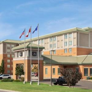 Hotels near Polish Canadian Cultural Centre - Executive Royal Hotel North Calgary