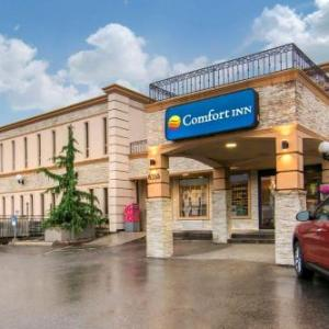 Hotels near Arrow Hall - Comfort Inn Toronto Airport