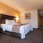 Hotels near Broadway Bloc Party - Comfort Inn Cottage Grove
