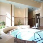 Hotels near Ordway Center for Performing Arts - Holiday Inn Mpls/St Paul Arpt-Mall Of America