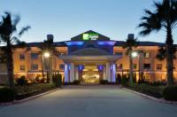 Holiday Inn Express Hotel & Suites Pearland Image