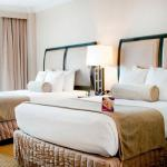 Hotels near Escambia County Equestrian Center - Crowne Plaza Hotel Pensacola-Grand Hotel