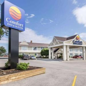 Hotels near Fisher Field Collingwood - Holiday Inn Express Hotel And Suites Collingwood-Blue Mountain