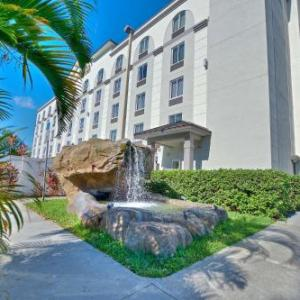 Best Western Airport Inn & Suites in Orlando