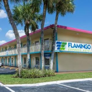 Flamingo Express Hotel in Kissimmee
