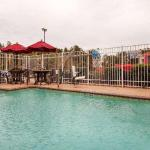 Accommodation near Coushatta Casino Resort - Best Western Oakdale Inn