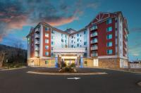 Holiday Inn Hotel & Suites Asheville - Downtown