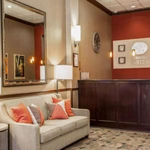 Hotels near Grant Park Chicago - Comfort Suites North Michigan Avenue
