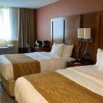 Accommodation near Helen Hayes Theatre - Comfort Inn Times Square West