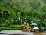 Lombok Indonesia Hotels - Villa Paerdoe Ii Gazebo 01