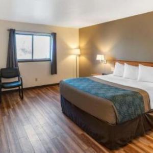 Grizzly Statue Missoula Hotels - Econo Lodge Missoula