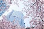 Minato Japan Hotels - The Strings By InterContinental, Tokyo, An IHG Hotel