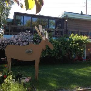 Hotels near Sullivan Arena - Anchorage Walkabout Town Bed And Breakfast