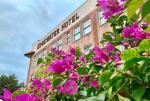 Winter Garden Florida Hotels - The Edgewater Hotel