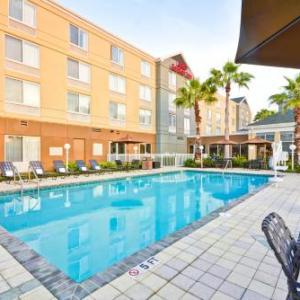 Hotels near Powel Crosley Estate - Hilton Garden Inn Sarasota-Bradenton Airport