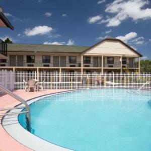 Hotels near Brass Mug Tampa - Super 8 Tampa U.S.F. Near Busch Gardens Downtown