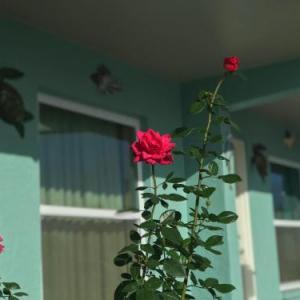 Seminole Casino Immokalee Hotels - Immokalee Inn