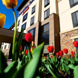 Hotels near Taggart Student Center - Springhill Suites Logan
