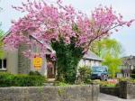 Thomastown Ireland Hotels - Ach Na Sheen Guest House