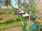 Ubud Indonesia Hotels - Junjungan Suite