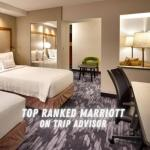 Roswell New Mexico Hotels - Fairfield Inn & Suites Roswell