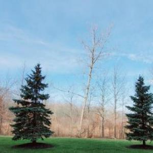 Fairfield Inn Cleveland Avon