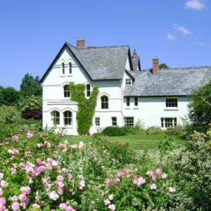 The Forest Country House B&B