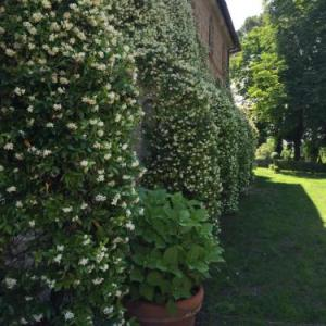 Book Now Il Giardino e la Dimora (Bomarzo, Italy). Rooms Available for all budgets. Featuring a large outdoor pool and hot tub this spacious historical villa is located in Bomarzo amid the leafy woodland countryside of Lazio. Il Giardino e la Dimora offers ai