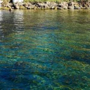 Bella Vista Suites Lake Geneva